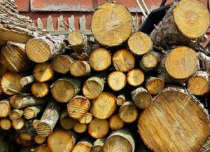 What is Seasoned Firewood Image - Harrisonburg VA - Old Dominion Chimneys